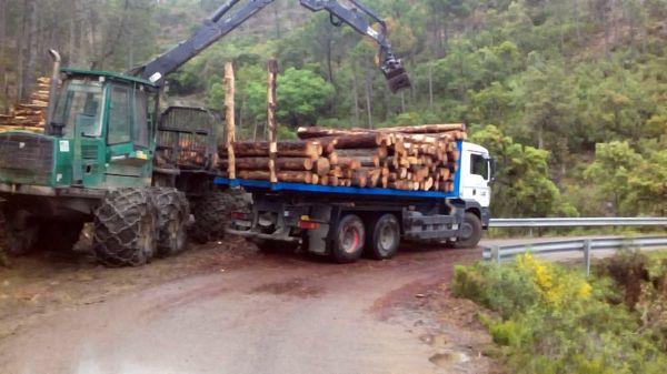 grupo de camiones de Contenedores Hidalgo Morales . Talavera