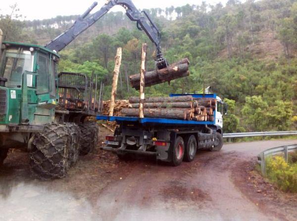 Camión MultiFit. Contenedores Hidalgo Morales . Talavera de la Reina